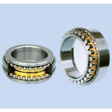 SKF Brand Bearing (SNL 509) with Lowest Price